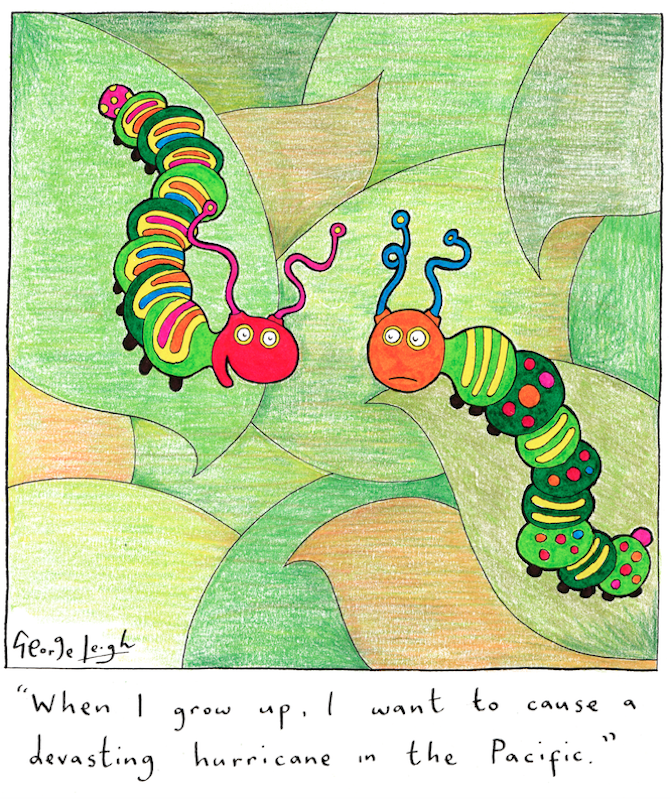 website-caterpillars